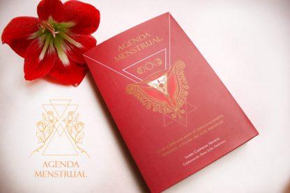 Pack Menstruación Visionaria